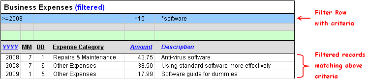 Image of a filtered table for tracking business expenses.
